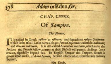 Adam in Eden snipped